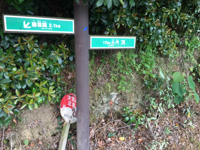 高野山町石道②