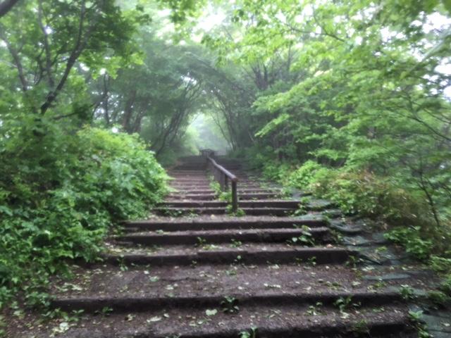 参拝@弥彦神社&弥彦山登山