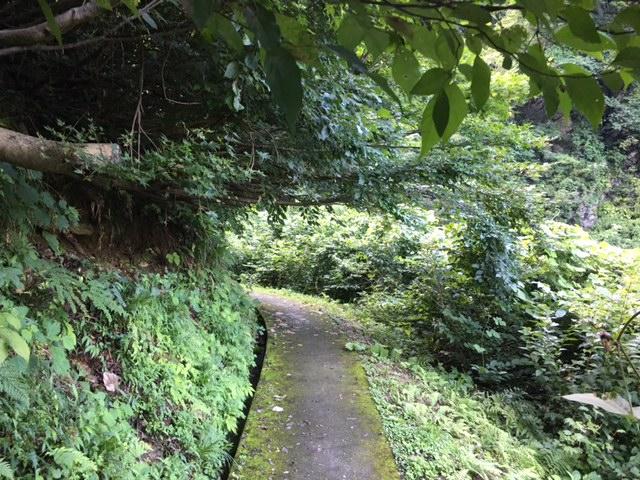 湯沢散歩(不動の滝)