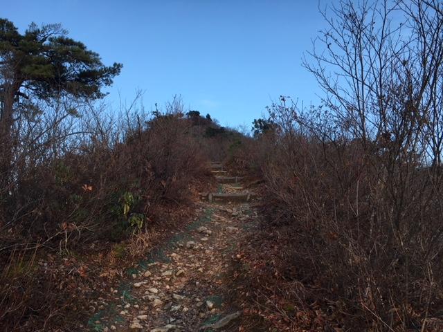 今年最後?の坂戸山登山