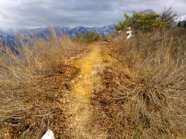 2018年坂戸山、初登頂。