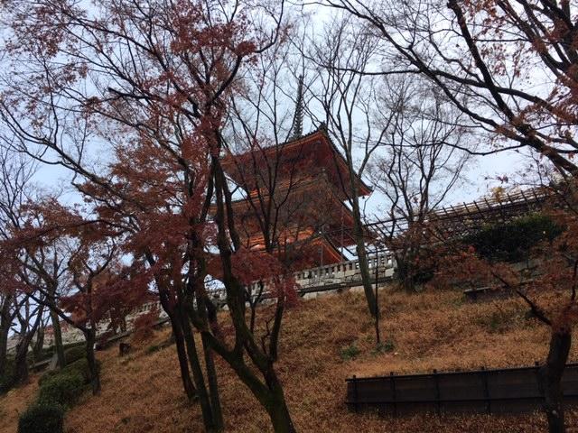 京都早朝散歩